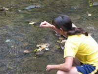 File source: http://commons.wikimedia.org/wiki/File:Field_Trip-_water_sampling.jpg
