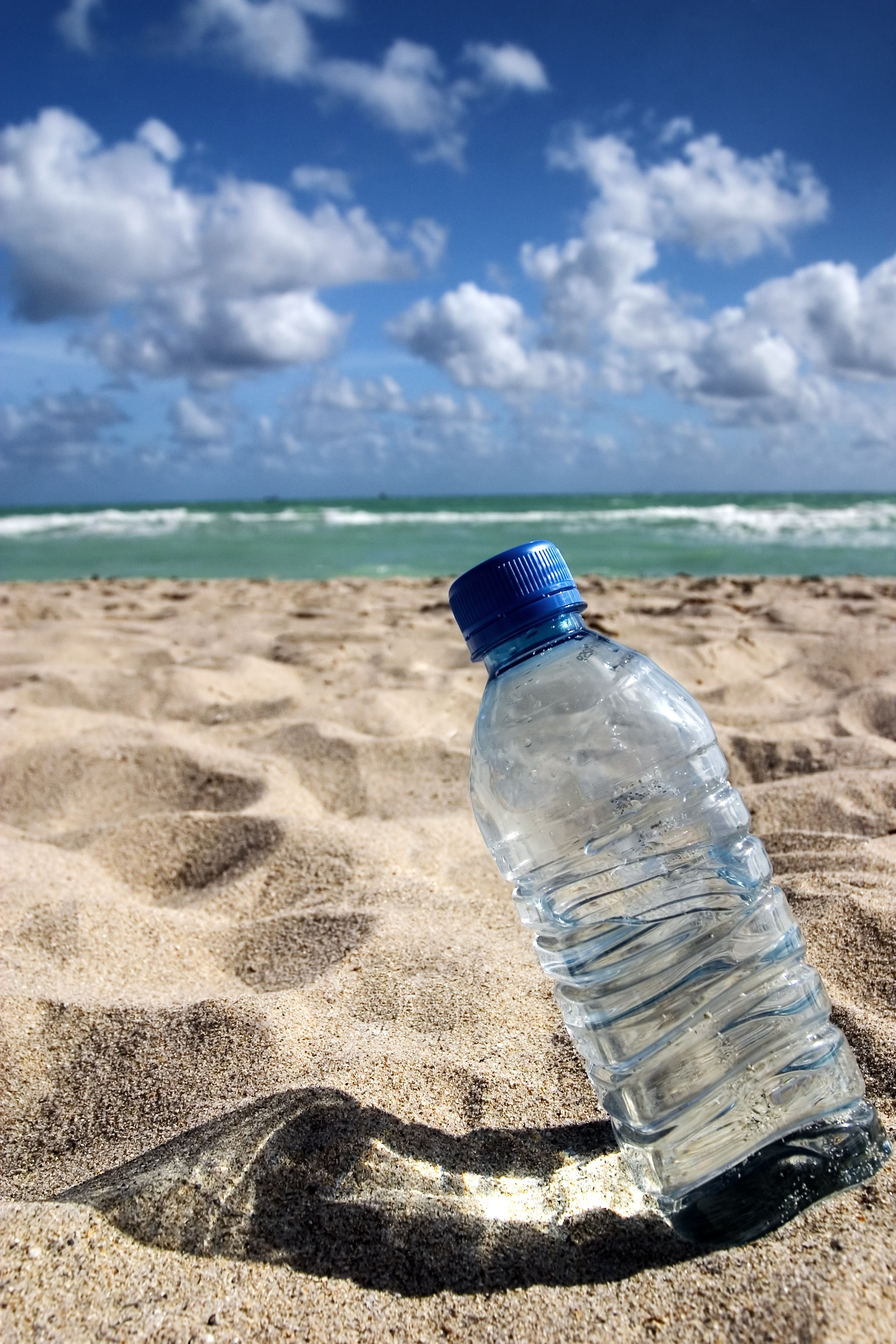 Trash free seas act introduced surfrider foundation