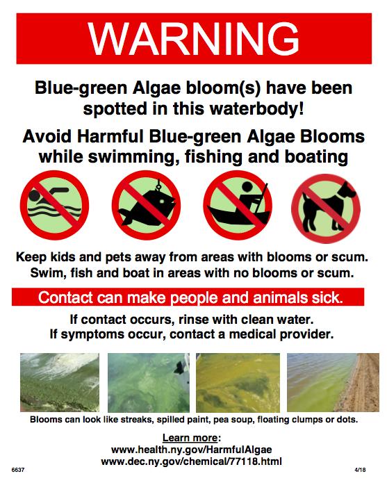Improved Signage for Blue-green Algae Blooms - Surfrider