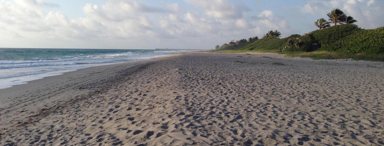 Palm Beach County Beach Cleanups