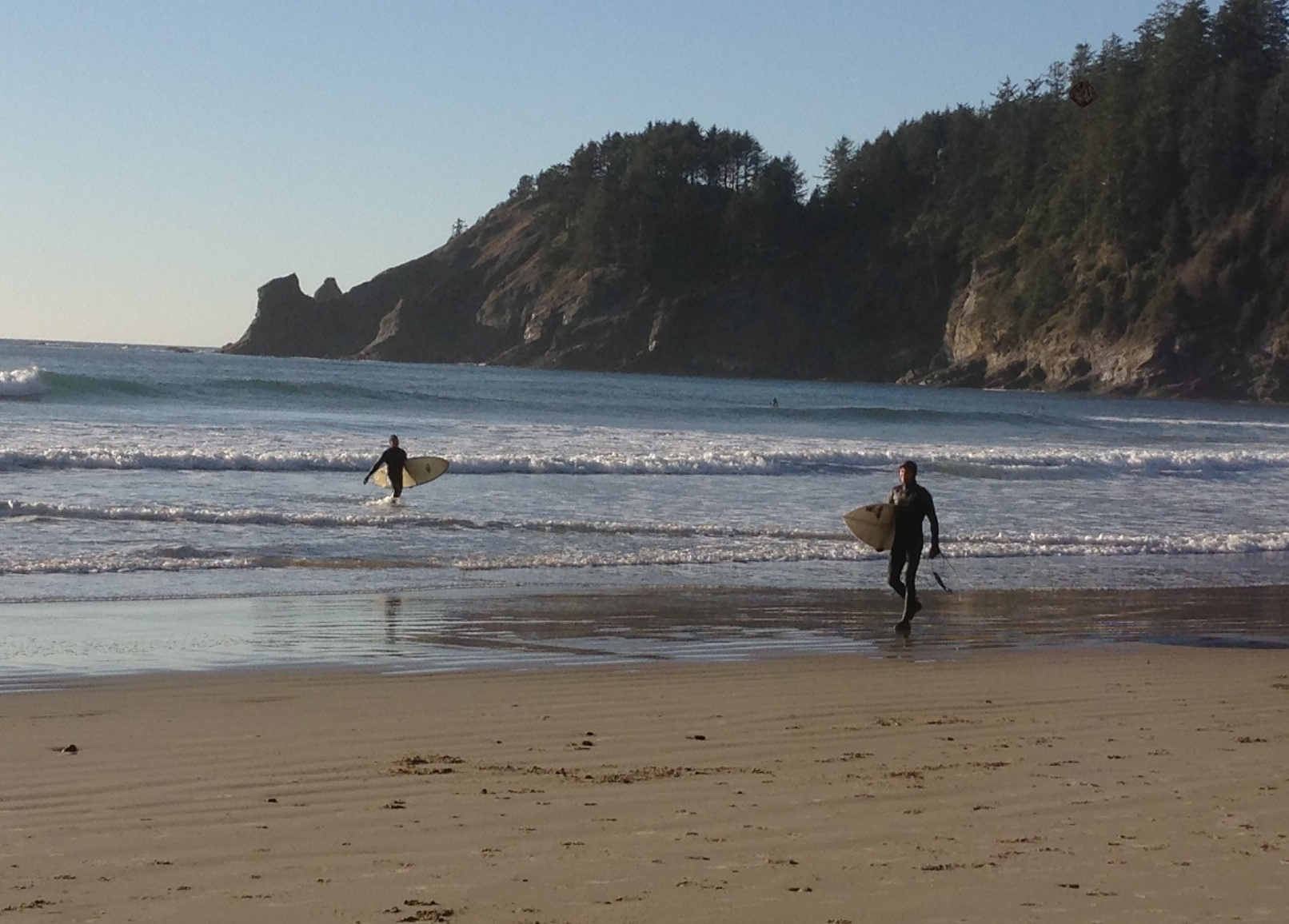 Surfers exit the water at Cape Falcon Marine Reserve, Oregon. Photo credit: Pete Stauffer