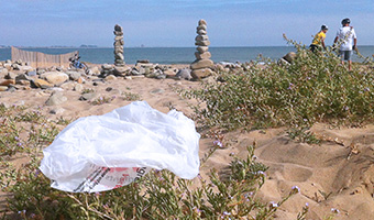 YES to CA Plastic Bag Ban