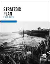 Strategic Plan 2018