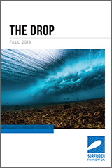 The Drop - Fall 2018
